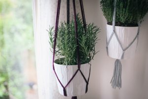 Simple Macramé Plant Hanger