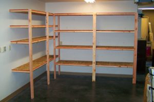 DIY Shelves for Garage