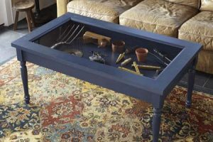 Display Case Shadow Box Coffee Table