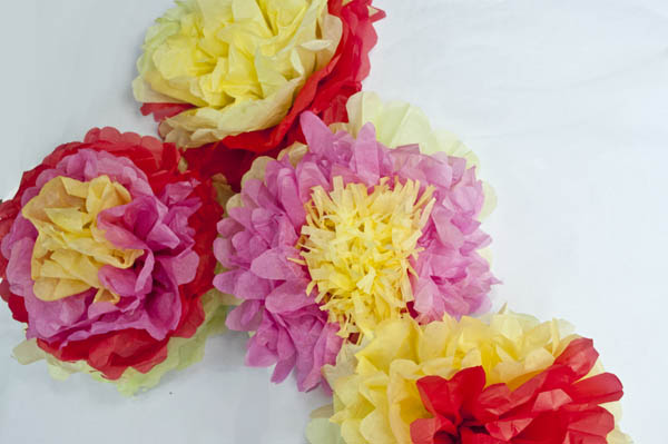 Giant Tissue Paper Flowers Crafts