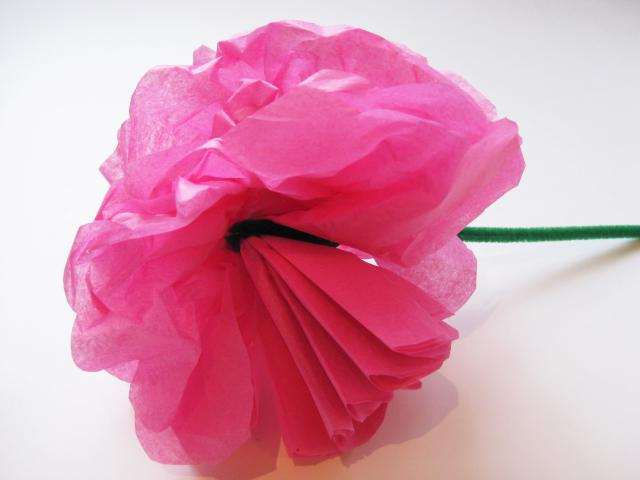 Gallery For gt How To Make Easy Tissue Paper Flowers Kids