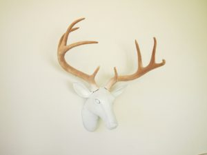 Paper Mache Deer Head Picture