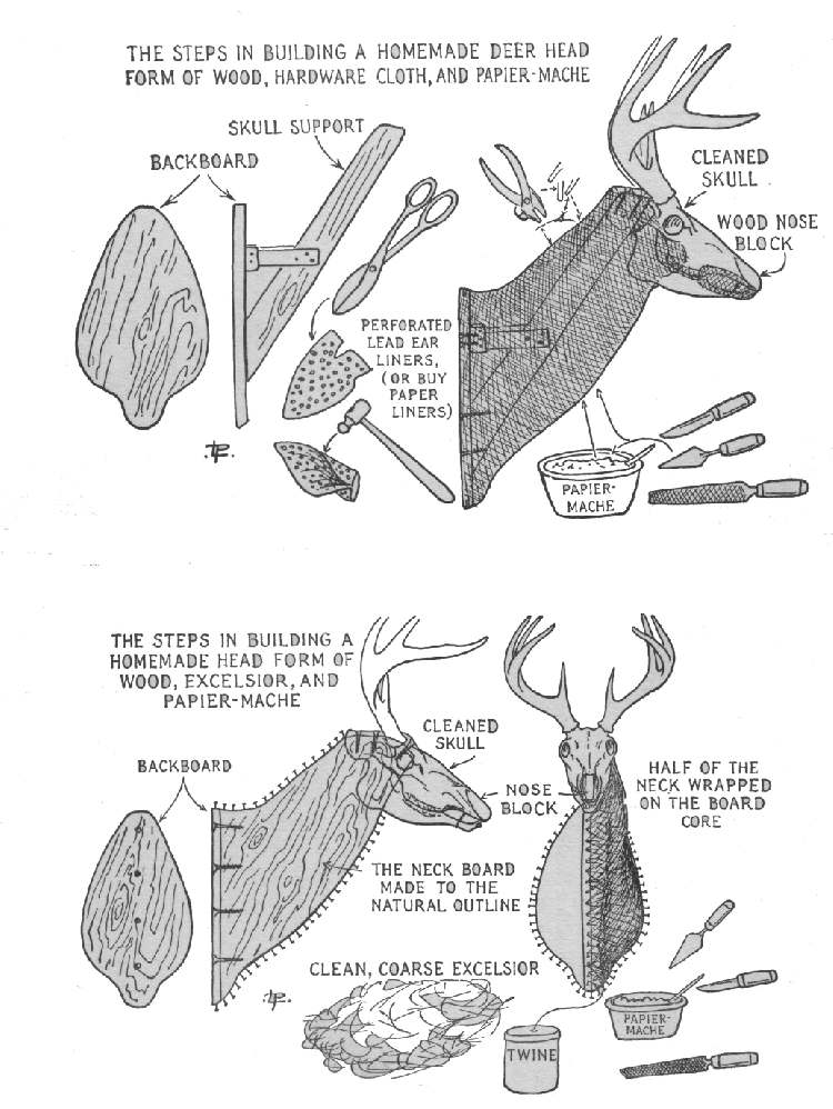 17 Paper Mache Deer Head Diy Instructions Guide Patterns