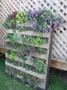 Outdoor Pallet Planter