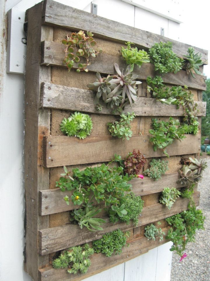 25 easy diy plans and ideas for making a wood pallet for Diy vertical garden wall