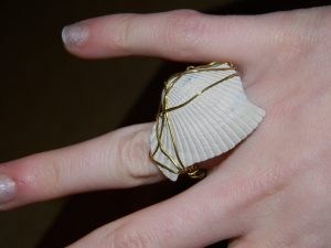 Wire Wrapped Ring with Stone