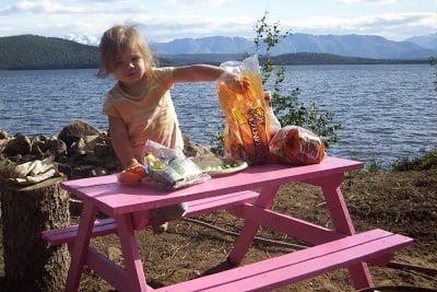 Wooden Picnic Tables Plans And Instructions Guide Patterns - 12 person picnic table