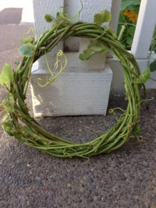 Small Grapevine Wreath