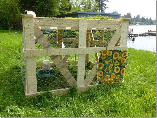 How to build a pallet chicken coop 20 diy plans guide for Moving chicken coop plans