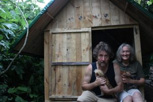 How to Build a Chicken Coop from Pallet