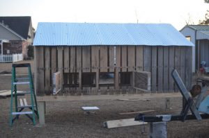 Pallet Chicken Coop House Plan