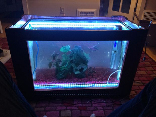 aquarium fish tank coffee table: 8 unique designs | guide patterns