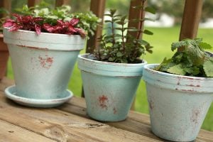 Distressed Painted Flower Pots