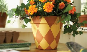 Paint a Flower Pot