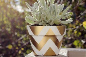 Painted Flower Pot Pattern
