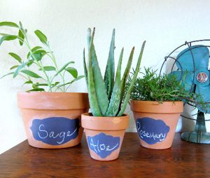 Painted Flower Pot Designs