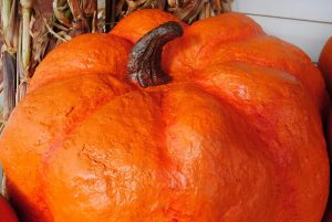 Paper Mache Giant Pumpkin