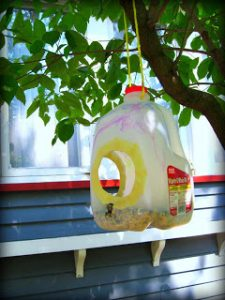 Gallon Milk Jug Bird Feeder