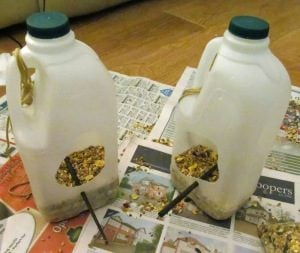 Milk Jug Bird Feeder Craft for Kids