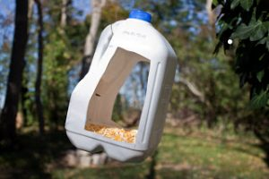 Bird Feeder with Milk Jug