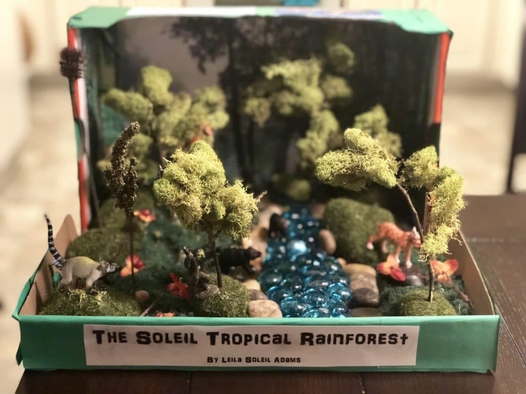 How To Make A Shoebox Diorama 28 Ideas Guide Patterns