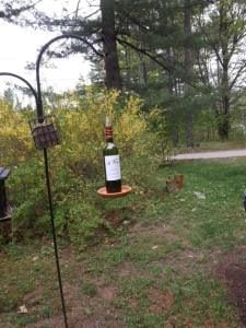 Wine Bottle Bird Feeder Craft