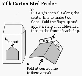 Milk Carton Bird Feeder Instructions