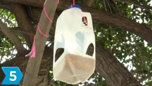 Plastic Milk Carton Bird Feeder