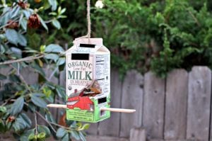 School Milk Carton Bird Feeder