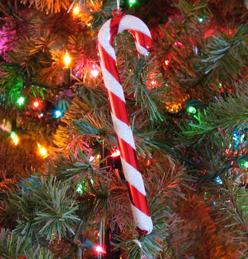 Candy Canes On Christmas Tree