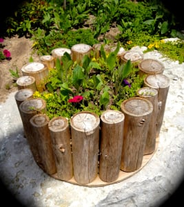Log Planter Idea