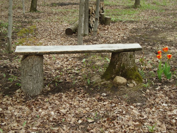 20 Plans To Build A Rustic Bench From Logs Guide Patterns