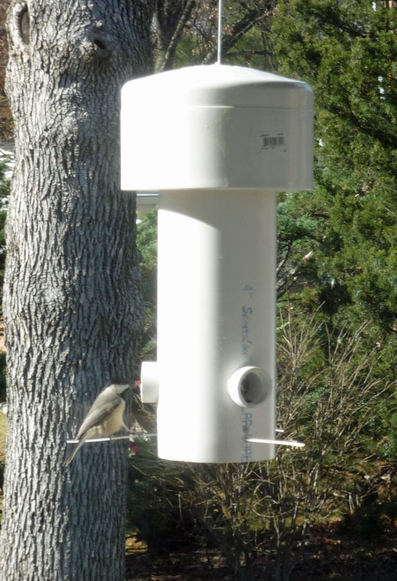 11 Ways To Make A Bird Feeder Out Of Pvc Pipe Guide