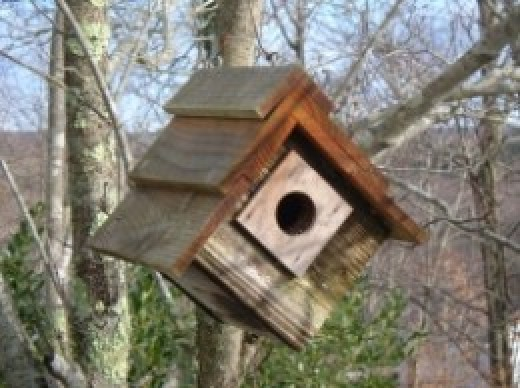 Pallet-Birdhouse-Plans Pallet Wood Bird Houses Plans on wooden bird house plans, build bird houses plans, wood pallet birdhouse, diy bird houses plans, wood duck bird house plans,