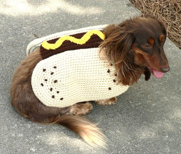 26 Free Crochet Dog Sweater Patterns