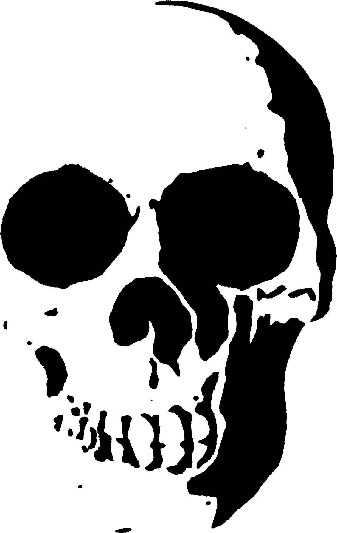 graphic regarding Skull Template Printable titled 23 Totally free Skull Stencil Printable Templates Direct Styles
