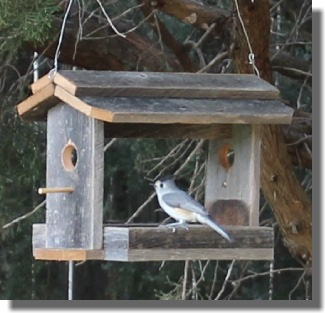16+ DIYs to Make a Wooden Bird Feeder