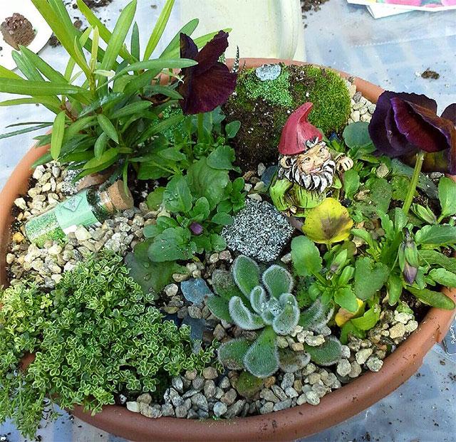 Mini Herb Garden Outdoor