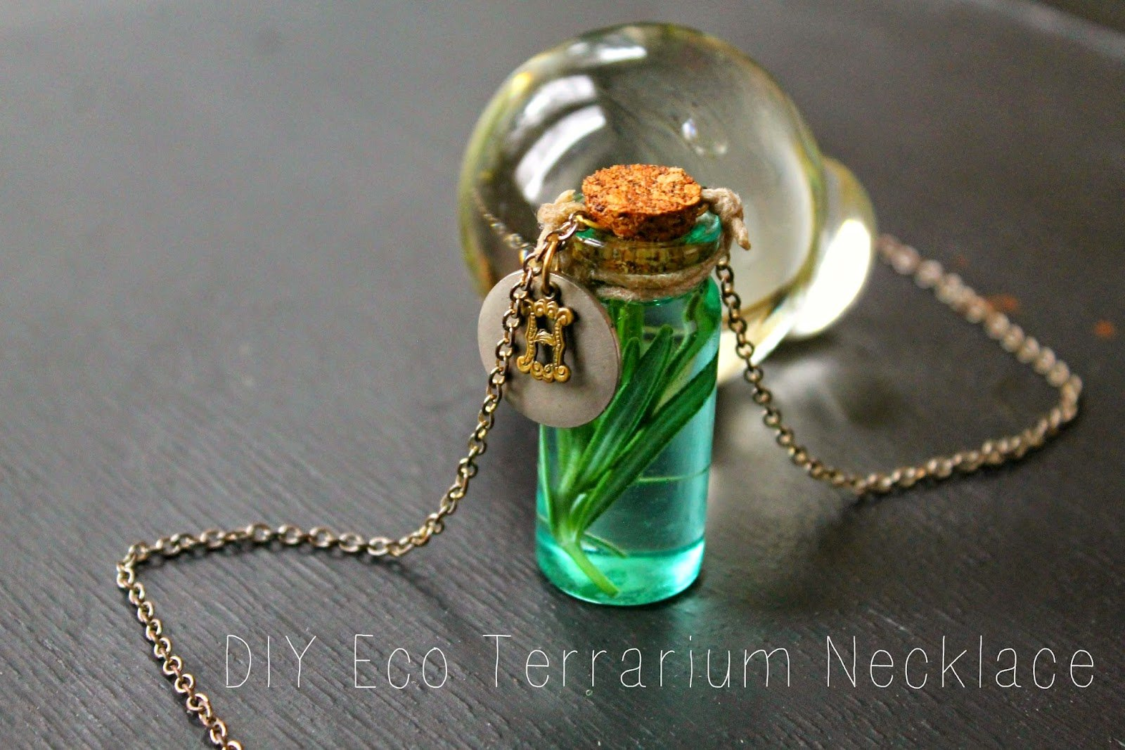 10 Designs To Make A Terrarium Necklace Guide Patterns