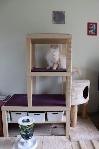18 Cool Diy Cat Tree Plans Guide Patterns