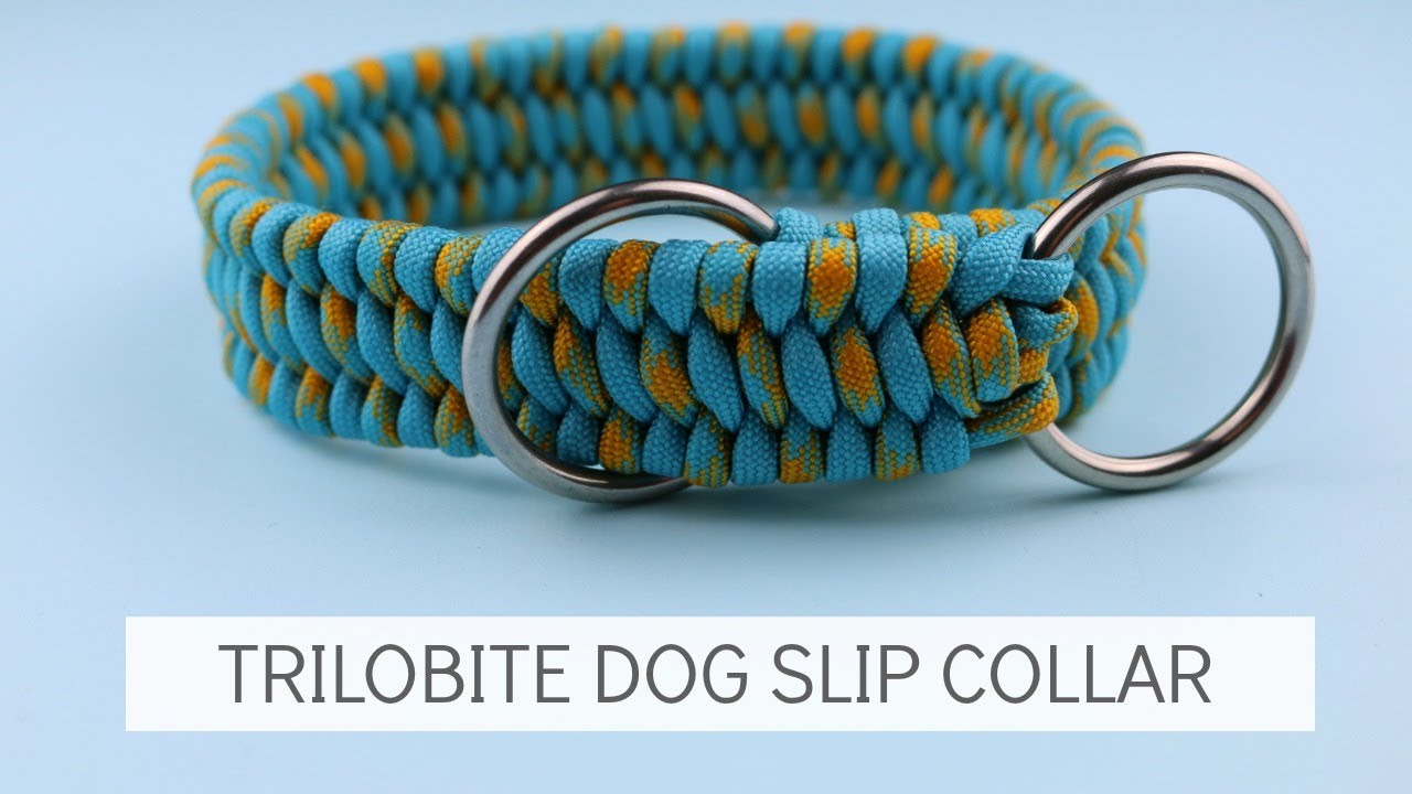 7 Paracord Dog Collar Patterns Guide Patterns
